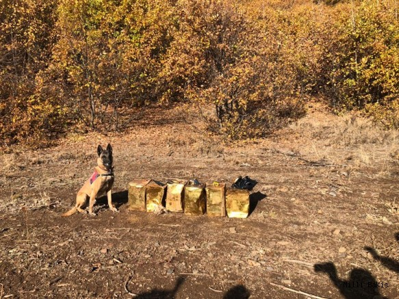 Jandarma Bitlis'te 100 Kg Patlayıcı Madde Ele Geçirdi